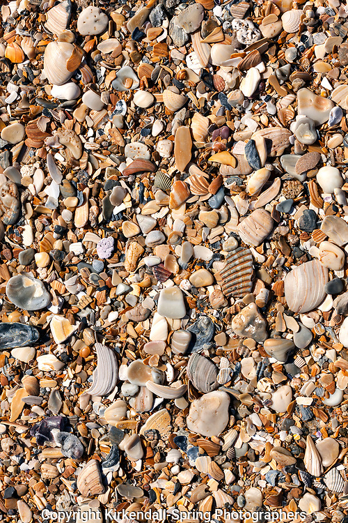 NC00750-00...NORTH CAROLINA - Beach made crushed shells in Cape Hatteras National Seashore.