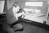 1969 Young Scientist Exhibition
