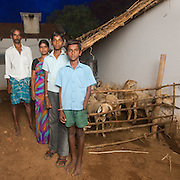 CAPTION: Following an accident, Pradeep (pictured, front) had to have his hand amputated. In order to ensure he'd be able to meet the costs associated with his special needs over the years, his father Jayanna borrowed from the Chamkol Programme's Revolving Fund Scheme and started a small sheep rearing business. LOCATION: Heggawadi (village), Santhemarahalli (hobli), Chamrajnagar (district), Karnataka (state), India. INDIVIDUAL(S) PHOTOGRAPHED: From left to right: Jayanna, Kumari, Prathap and Pradeep.