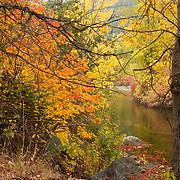 Fall color lines the banks of Nason Creek near Merritt, Washington.