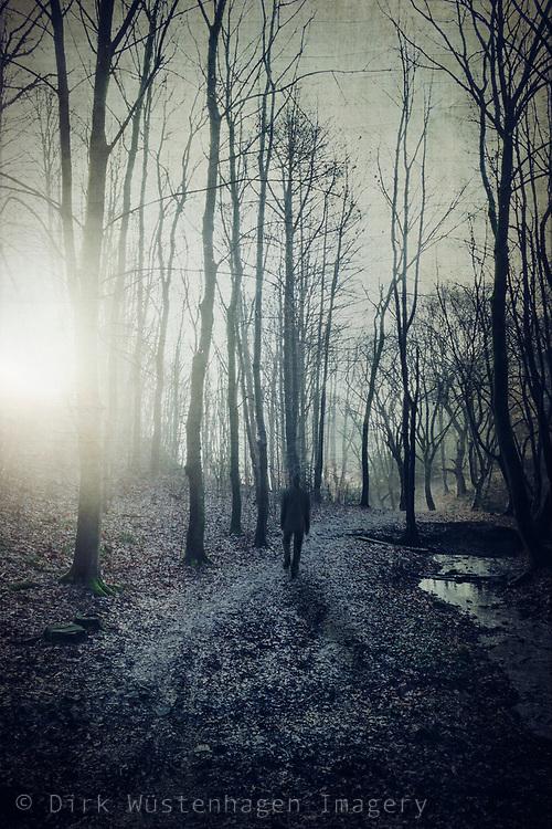 Mann auf Waldweg bei Sonnenaufgang, Wuppertal, Deutschland