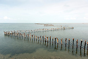 Fishtraps, Jaffna lagoon. 2011