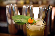 """One of Hamilton's on the Square's signature cocktails, """"The Peter Rabbit,"""" with Pimm's liqueur, local basil, fresh squeezed lemon juice and cane syrup, Saturday, October 31, 2015."""