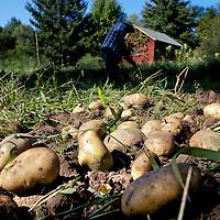 Family Garden in Waushara County, Wisconsin.