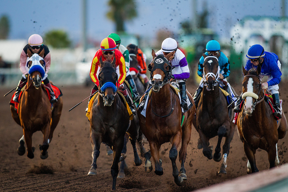 December 19, 2015:  the field for the Futurity battles for position at Los Alamitos Race Track in Cypress California. Evers/ESW/CSM