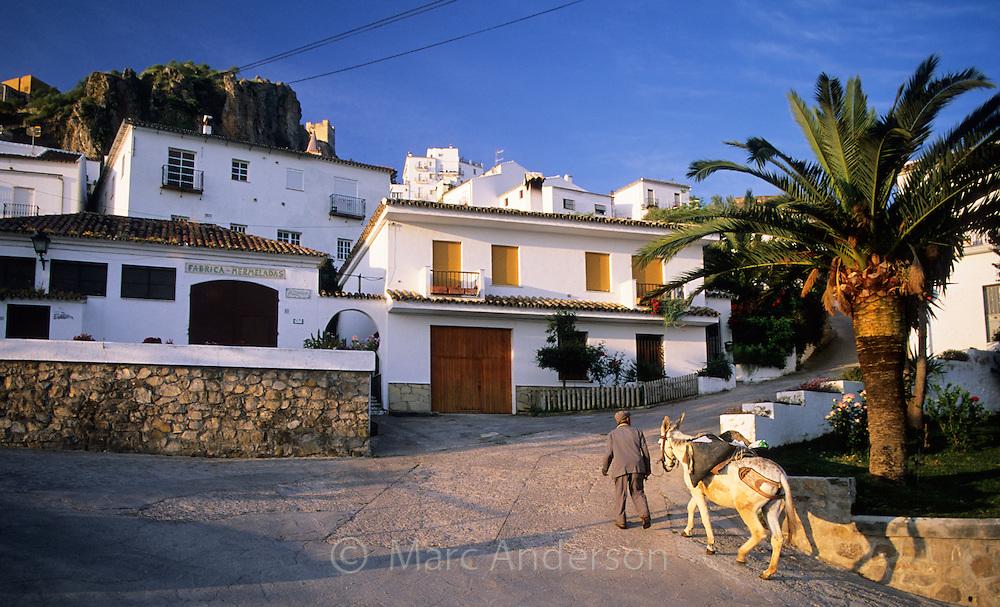 Old Man walking his donkey in Zahara de la Sierra, a typical white village (pueblo blanco) in Andalucia, Spain