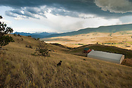 Mountain Ranch, west of Livingston, Montana, Absaroka Range<br /> PROPERTY RELEASED