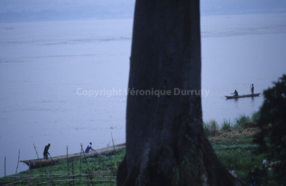 DUGOUTS ON THE CONGO RIVER NEAR THE FIELDS OF BRAZZAVILLE, CONGO