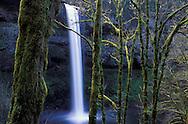 Waterfall, South Falls, Silver Falls State Park, Oregon, USA