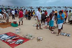 Praia do Mucuripe em Fortaleza, Ceara. Logo ao amanhecer pescadores vendem os peixes trazidos nas famosas jangadas. / The fish markert at Mucuripe Beach in Fortaleza, the state capital of Ceara. Fortaleza is the 5th largest city in Brazil.