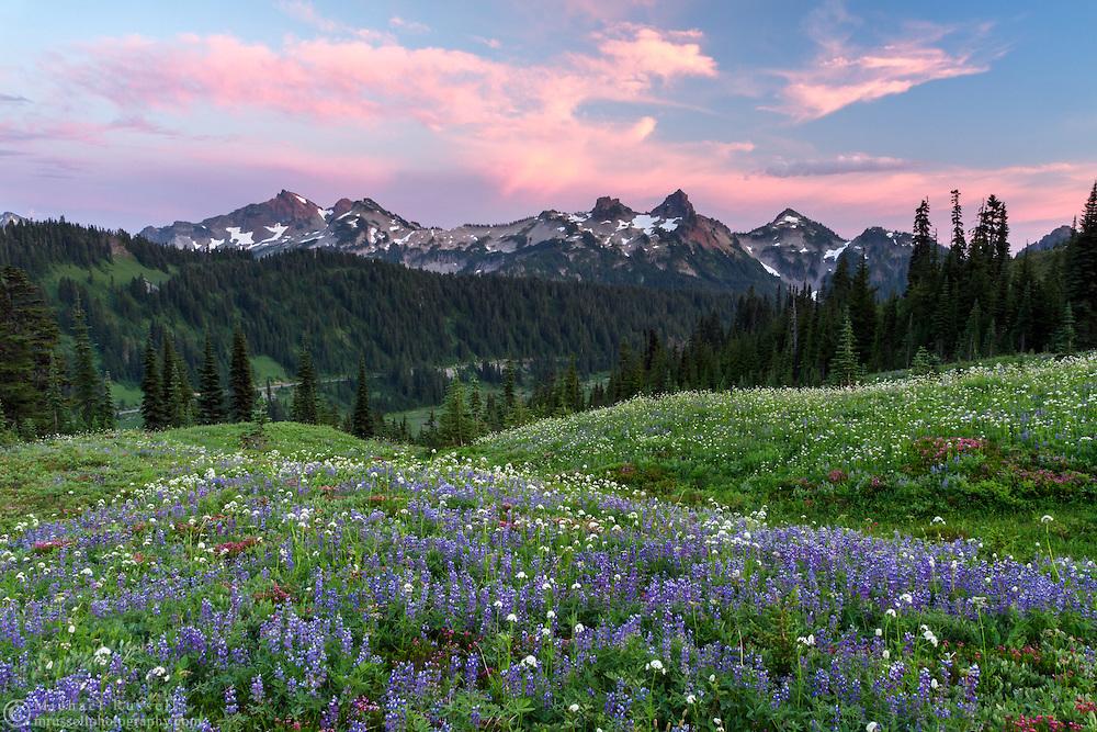 Sunset over the Tatoosh Range from Paradise in Mount Rainier National Park, Washington State, USA