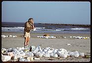 01: PLASTIC TRASH BEACH SURVEY