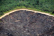 A road separates rainforest and recently logged and burned land, in Jambi province, Indonesia, July 4, 2009.