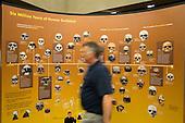 Exploring Human Origins –Milpitas Library