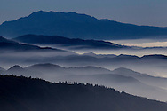 The mountains covered with the morning fog is seen at San Bernardino National Forest on Saturday, Feburary 9, 2014, in Cedar Glen, California. (Photo by Ringo Chiu/PHOTOFORMULA.com)