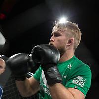 UFC London - Gustafsson vs. Manuwa