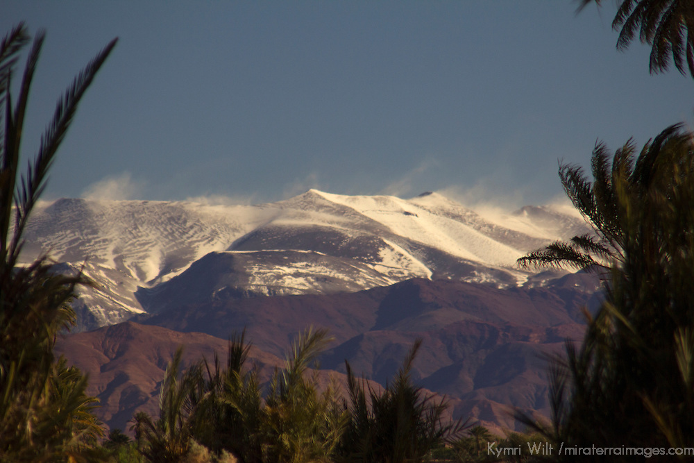 Africa, Morocco, Skoura. Atlas Mountains view from Skoura oasis.