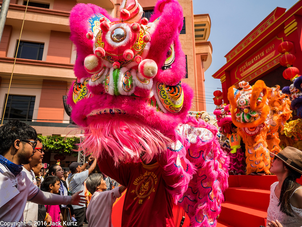 """08 FEBRUARY 2016 - BANGKOK, THAILAND:  The start of the lion dancers' parade in Bangkok's Chinatown district during the celebration of the Lunar New Year. Chinese New Year is also called Lunar New Year or Tet (in Vietnamese communities). This year is the """"Year of the Monkey."""" Thailand has the largest overseas Chinese population in the world; about 14 percent of Thais are of Chinese ancestry and some Chinese holidays, especially Chinese New Year, are widely celebrated in Thailand.      PHOTO BY JACK KURTZ"""