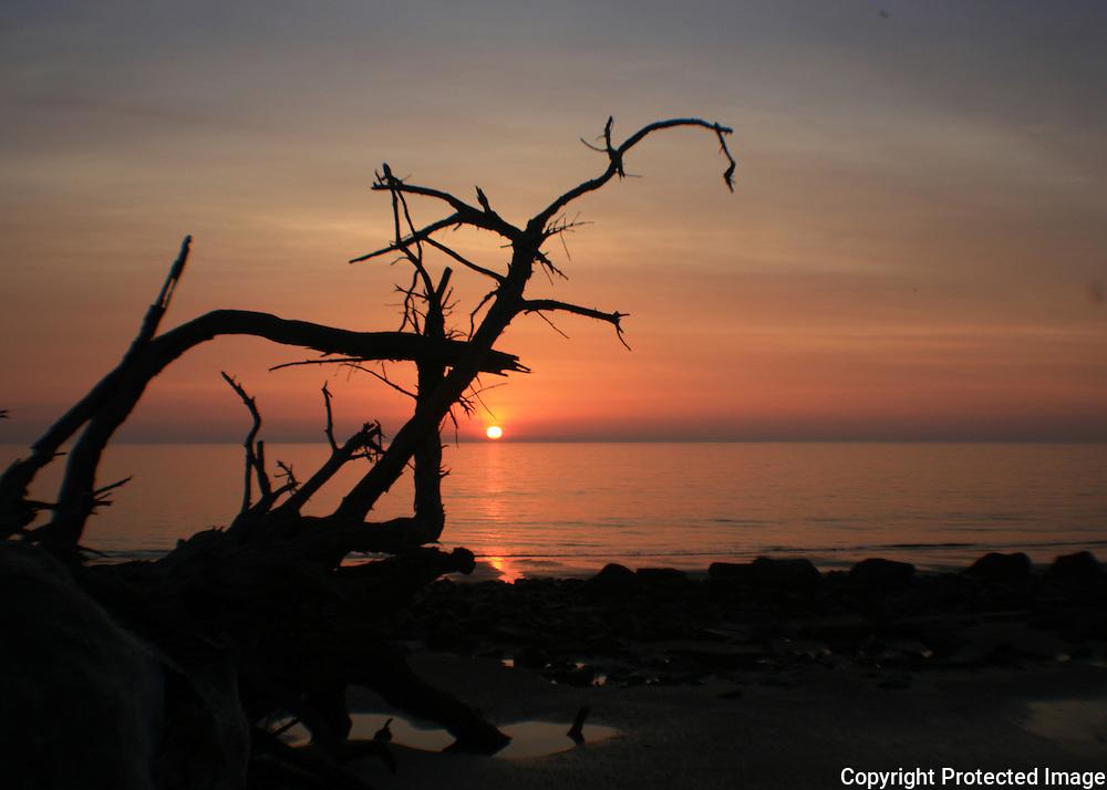 Sunrise on Driftwood Beach, Jekyll Island, fisheye view