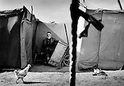 The Sputnik refugee camp in the open landscape between Ingushetia and Chechnya, where 10,000 people survived in 400 tents. The following year the Russians closed the camp, claiming it was a base for terrorists.  July 2002.