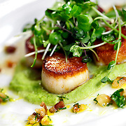 SHOT 5/16/11 3:47:14 PM - The Kitchen is a community bistro located in historic downtown Boulder, Colorado. The menu evolves seasonally and reflects the simple and straightforward preparation of comfortable classics with a focus on locally-sourced and sustainable ingredients. Seared sea scallops with pea puree. A delicious pairing of flavors. The peas bring out the sweetness in the scallops. (Photo by Marc Piscotty / © 2011)