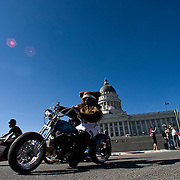 Caption Only: Superbike World Championship riders, along with the Utah Jazz mascot, Bear, lead a motorcycle parade from the State Capitol to EnergySolutions Arena in Salt Lake City, Utah, Thursday, May 28, 2009.  August Miller, Deseret News .