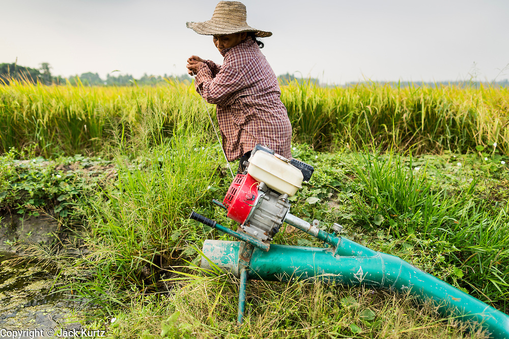 17 MARCH 2014 - LAM LUK KA, PATHUM THANI, THAILAND: A woman tries to start the irrigation pump in her rice field in Pathum Thani. She said the drought in central Thailand would cut her rice crop and family income by at least one third. It hasn't rained in central Thailand in more than three months, impacting agriculture and domestic water use. Many farms are running short of irrigration water and salt water from the Gulf of Siam has come up the Chao Phraya River and infiltrated the water plants in Pathum Thani province that serve Bangkok. PHOTO BY JACK KURTZ