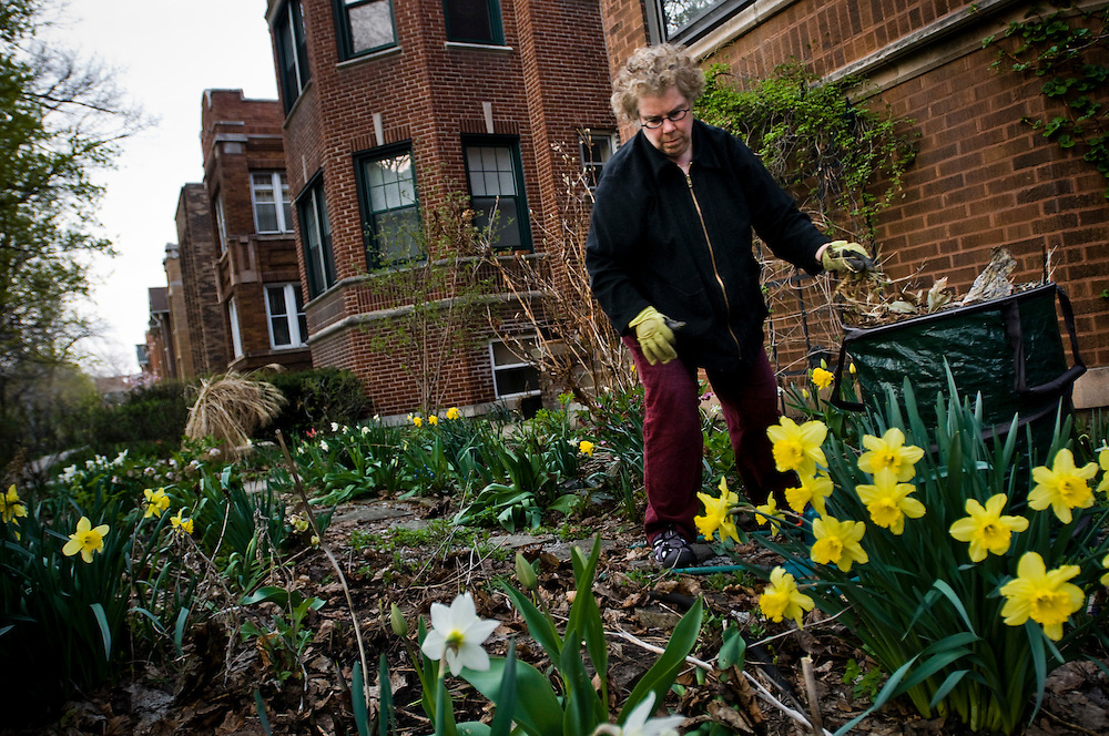 Judith Cooper gardening outside her home in Rogers Park, Chicago.<br /> <br /> Rogers Park is one of Chicago's most ethnically diverse neighborhoods.<br /> <br /> Green Chicago.Photographer: Chris Maluszynski /MOMENT