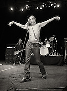 Iggy Pop -- United Plaza, New York, NY