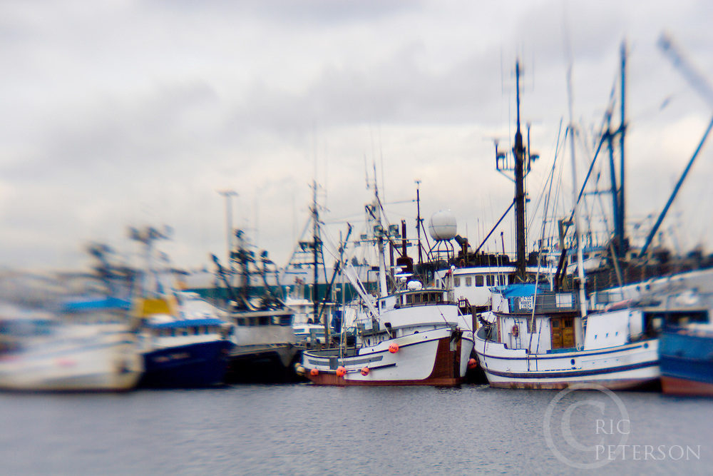 Boats At Fishermans Wharf In Seattle Washington Ric