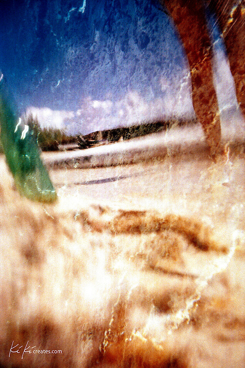 Photo taken with a 35 mm underwater camera on a private beach in North Eleuthera.