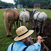 Taking a break while plowing with a one bottom riding-plow at Stonefield Historic Site. .Horse Drawn Days was held Saturday, June 12, 2010 at Stonefield Historic Site near Cassville, Wisconsin.