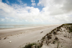 Storm detritus washed up on Eighty Mile Beach south of Broome.