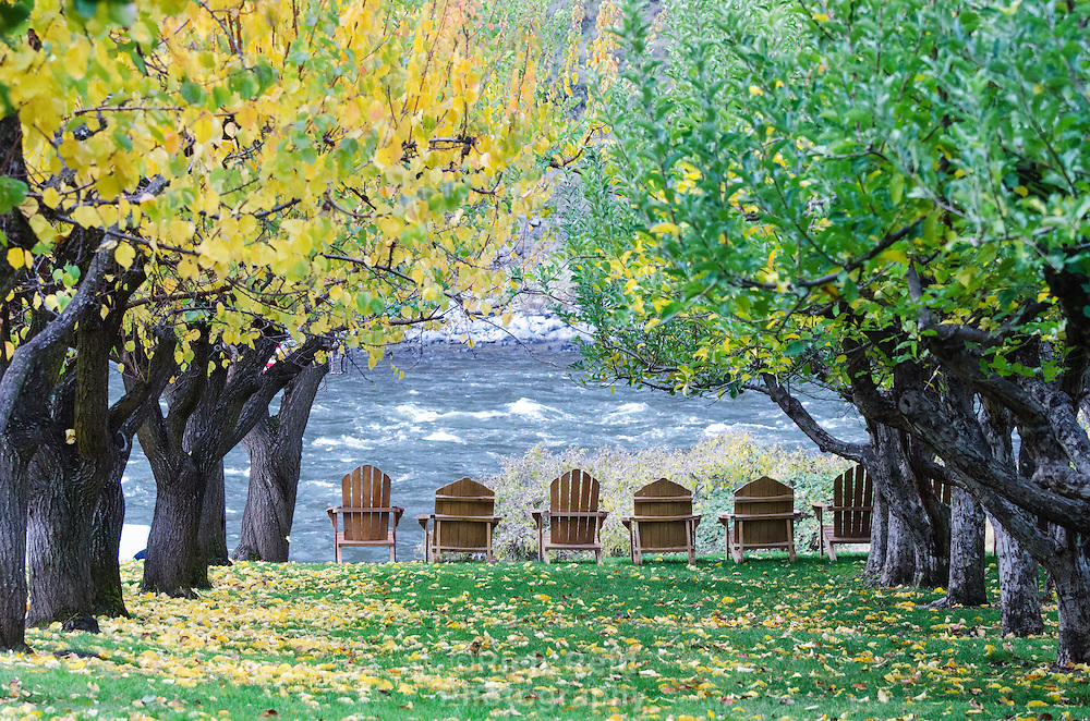 Fall colors at the Nature Conservancy's Garden Creek site along the Snake River, Idaho.