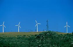 Minas Gerais, Brasil. 07/2002..Usina de energia eolica no Morro do Camelinho./ Eolic Power Plant in Camelinho Mount..Foto © Marcos Issa/Argosfoto