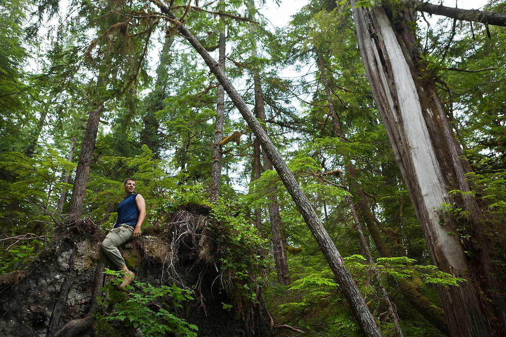 Henry Pedersen looks out from the top of the root wad of a fallen tree along the West Coast Trail, British Columbia, Canada.