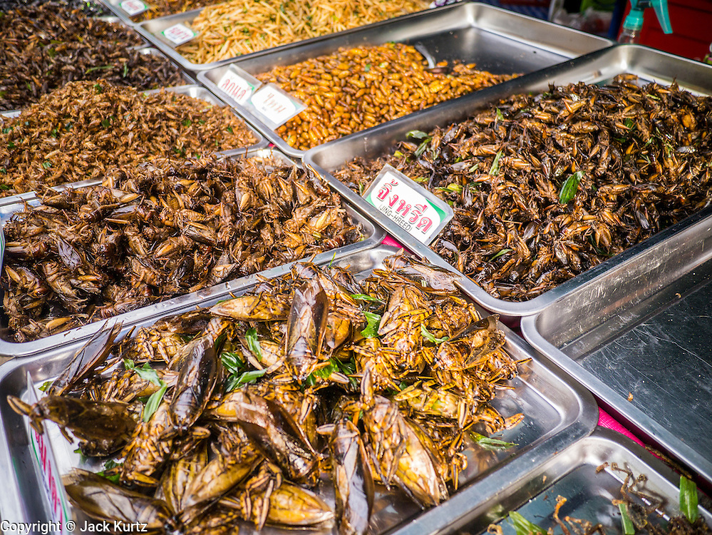 "27 NOVEMBER 2012 - BANGKOK, THAILAND:  Fried and grilled insects for sale in the food row at the Wat Saket Temple Fair in Bangkok. Wat Saket, popularly known as the Golden Mount or ""Phu Khao Thong,"" is one of the most popular and oldest Buddhist temples in Bangkok. It dates to the Ayutthaya period (roughly 1350-1767 AD) and was renovated extensively when the Siamese fled Ayutthaya and established their new capitol in Bangkok. The temple holds an annual fair in November, the week of the full moon. It's one of the most popular temple fairs in Bangkok. The fair draws people from across Bangkok and spills out in the streets around the temple.   PHOTO BY JACK KURTZ"