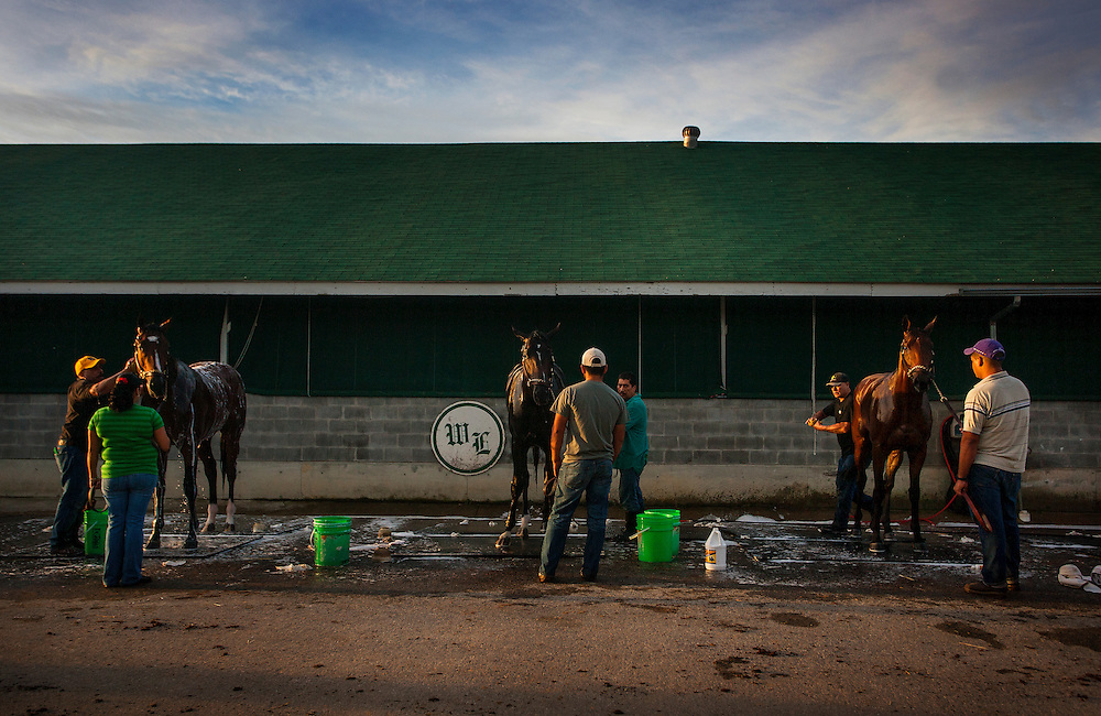 Horses get bathed at D Wayne Lukas' barn at Churchill Downs in Louisville, KY on May 02, 2013. (Alex Evers/ Eclipse Sportswire)
