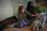 Kathy Bowler poses for a portrait with three of her dogs, from left, Liam, Quincy, and Brogan at her home in Sacramento, California, March 17, 2013.