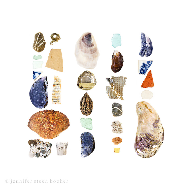 Beach stones, sea glass, Northern Rock Barnacle (Semibalanus balanoides), pottery shards, Blue Mussels (Mytilus edulis), plastic plant tag, Rock Crab (Cancer irroratus), manmade aggregate, plastic shotgun wadding, Atlantic Oyster (Crassostrea virginica), aluminum bottle top, unidentified seed, freshwater mussel?, duct tape, styrofoam, Green Crab (Carcinus maenas), plastic fragment, mutated Blue Mussel, sea brick, and Horse Mussel (Modiolus modiolus).