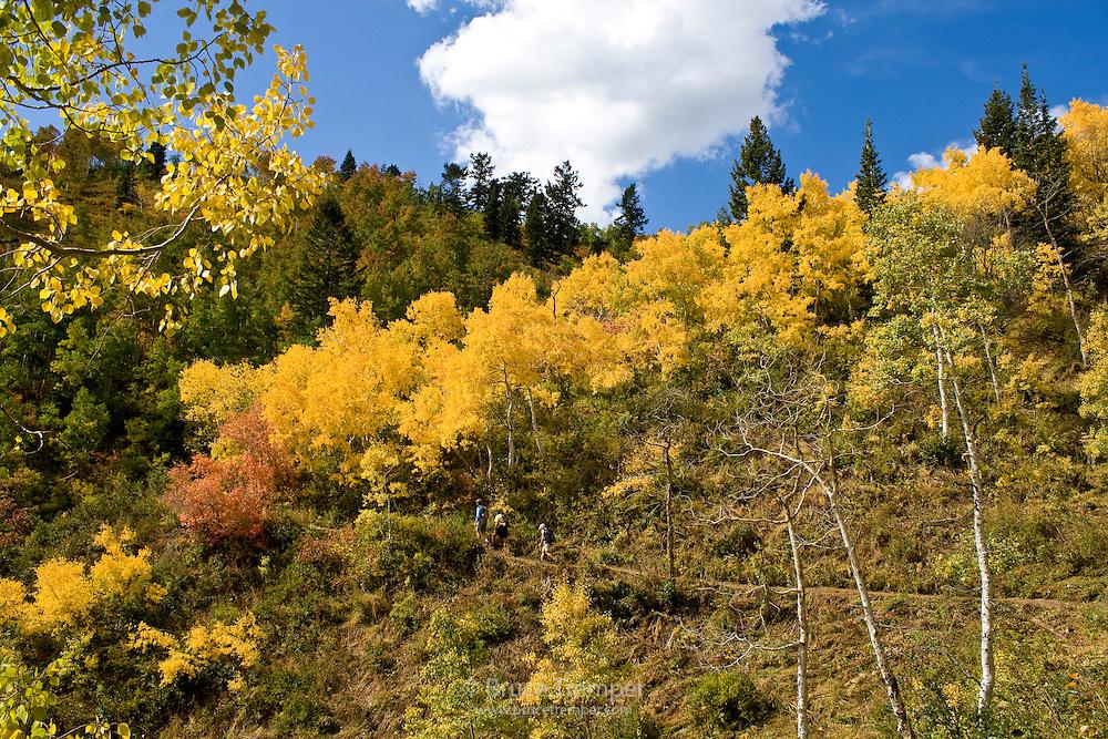 Hikers in fall colors, Wasatch Range, Utah