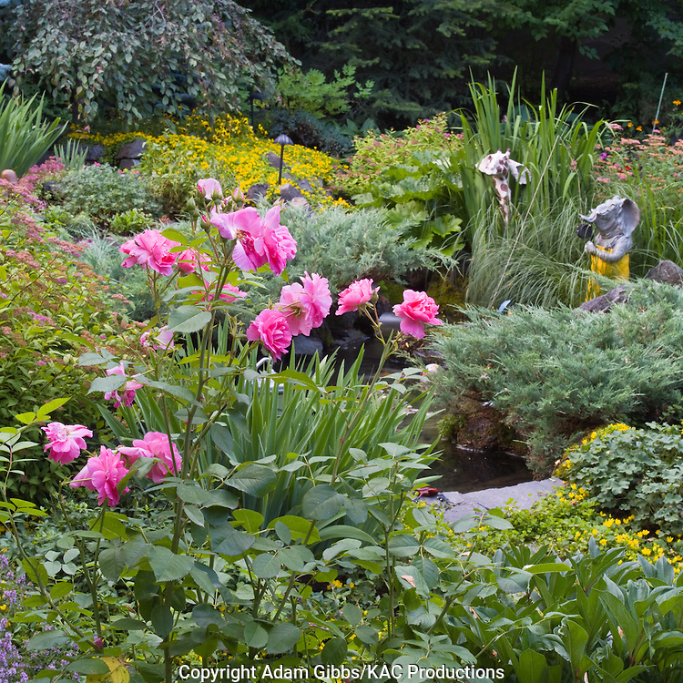 roses in the foreground lead towards a  pond surrounded by shrubs perennials and a couple of whimsical garden sculptures