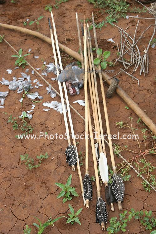 Africa, Tanzania, Lake Eyasi, Bow and arrows of the Hadza tribe a small tribe of hunter gatherers AKA Hadzabe Tribe April 2006