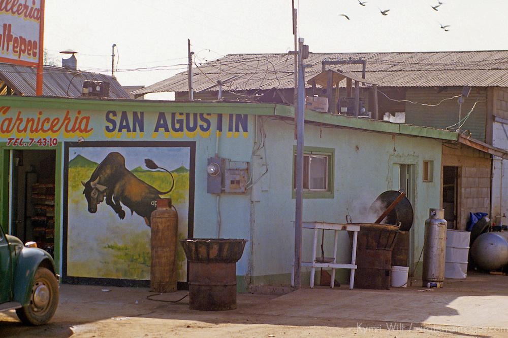 North America, Mexico, Baja California, Ensenada. A carniceria, or meat vendor, readies an outdoor grill.