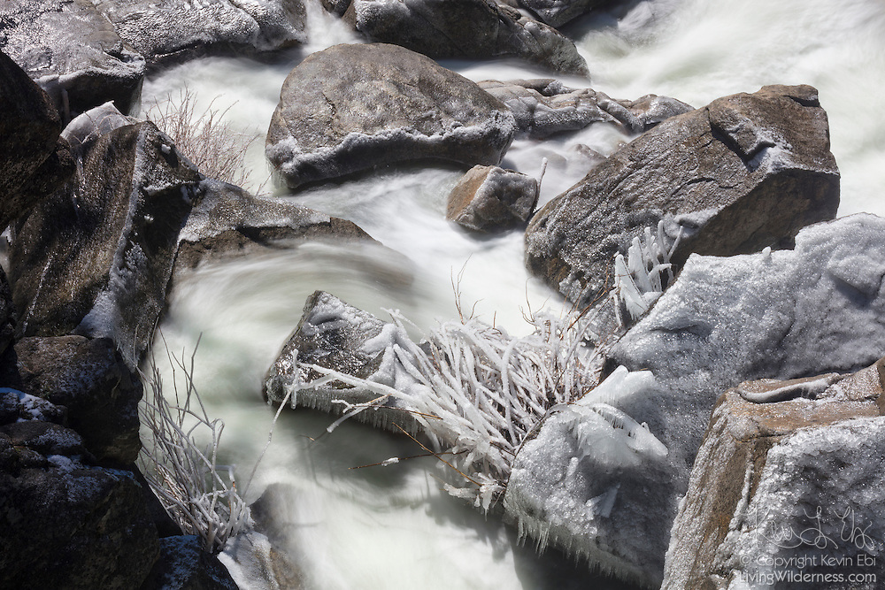 Cascade Creek flows past ice-covered rocks and brush on a below-freezing morning in Yosemite National Park, California.