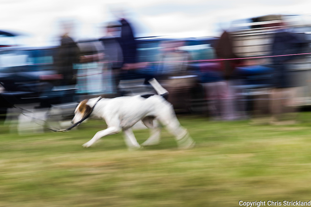 Pennymuir, Oxnam, Jedburgh, Scottish Borders, UK. 5th September 2015. The annual Upper Kalewater Show & Sports held at Pennymuir just inside the Scottish Borders.