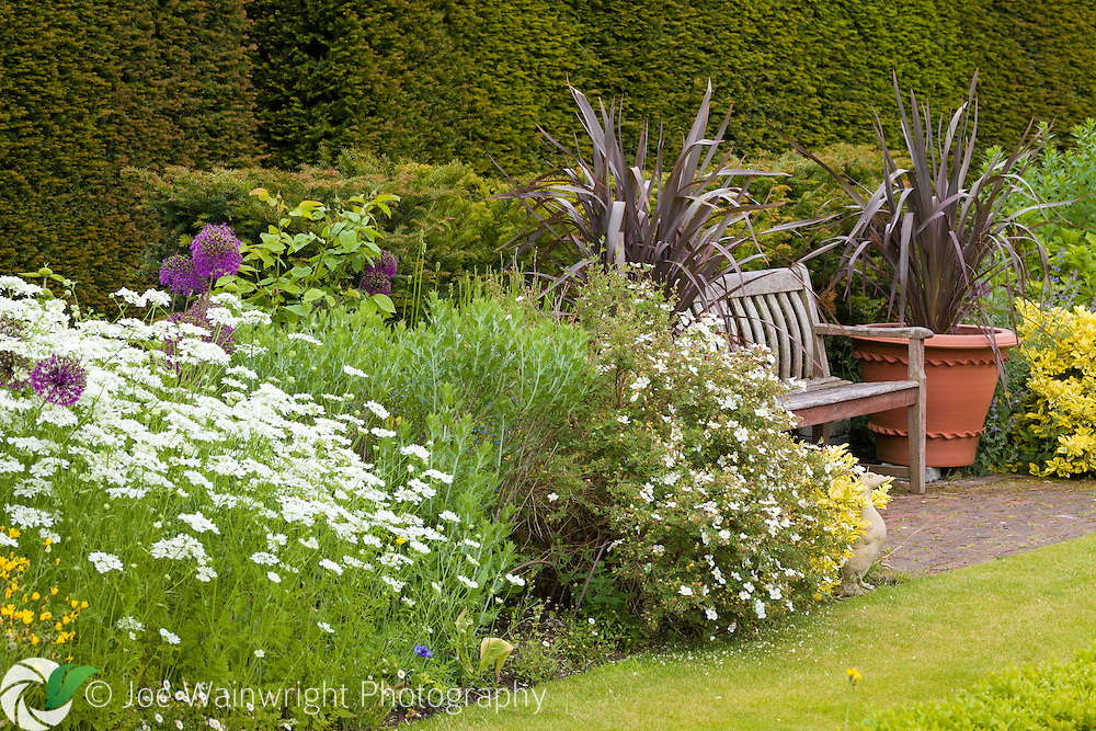 A bench with deep herbaceous borders on each side, in the Pool Garden at Abbeywood Gardens, Cheshire