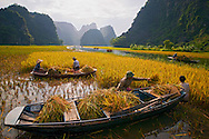 Vietnam Images-people-Ninh Binh. phong cảnh việt nam