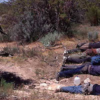 A pair of heavily armed vigilantes, dressed in camouflage and carrying assault rifles, captured a group of suspected undocumented migrants after they crossed into the U.S. through a border ranch in eastern San Diego, CA town of Campo. Please contact Todd Bigelow directly with your licensing requests. PLEASE CONTACT TODD BIGELOW DIRECTLY WITH YOUR LICENSING REQUEST. THANK YOU!