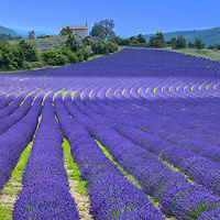 Provence France, Europe